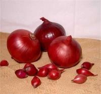 Цибуля сіянка сорт Red Baron червона 0,5кг